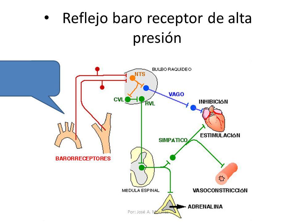 Reflejo baro receptor de alta presión Por: José A. Morales