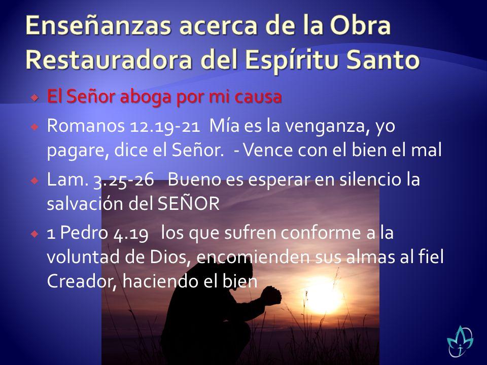 El Señor aboga por mi causa El Señor aboga por mi causa Romanos 12.19-21 Mía es la venganza, yo pagare, dice el Señor. - Vence con el bien el mal Lam.