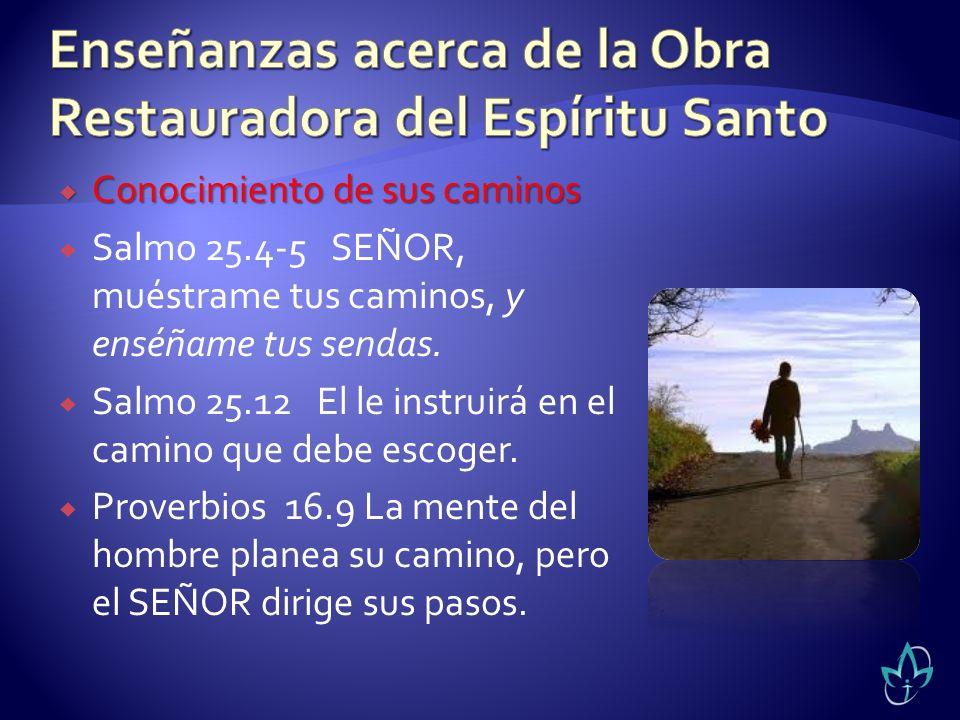 Conocimiento de sus caminos Conocimiento de sus caminos Salmo 25.4-5 SEÑOR, muéstrame tus caminos, y enséñame tus sendas. Salmo 25.12 El le instruirá