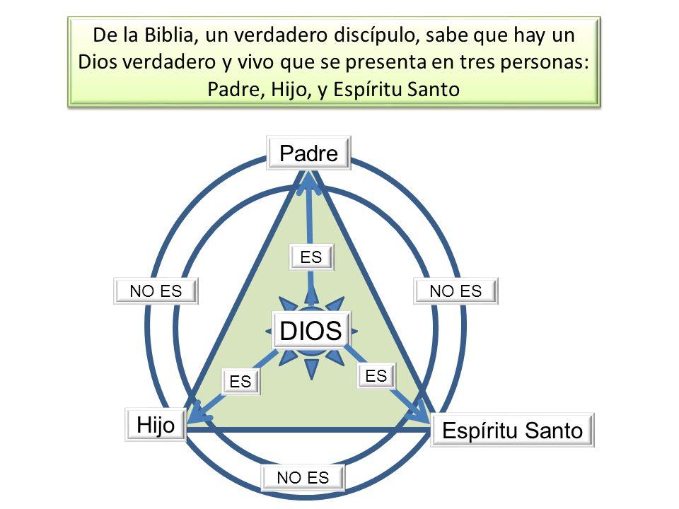 De la Biblia, un verdadero discípulo, sabe que hay un Dios verdadero y vivo que se presenta en tres personas: Padre, Hijo, y Espíritu Santo DIOS Padre