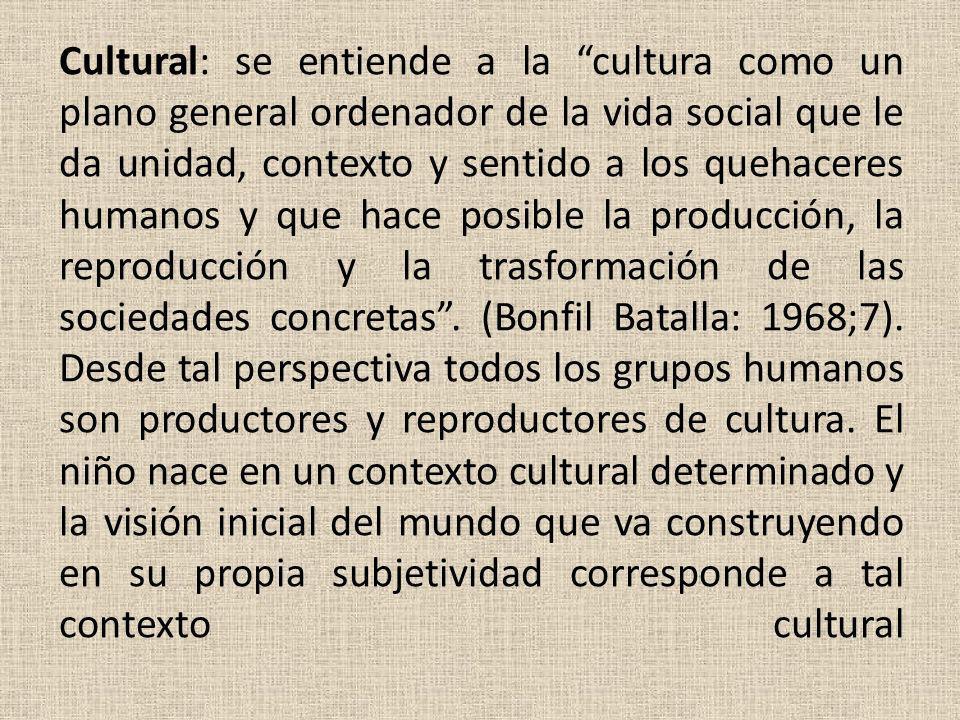 Cultural: se entiende a la cultura como un plano general ordenador de la vida social que le da unidad, contexto y sentido a los quehaceres humanos y q