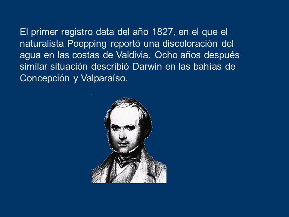 El primer registro data del año 1827, en el que el naturalista Poepping reportó una discoloración del agua en las costas de Valdivia. Ocho años despué