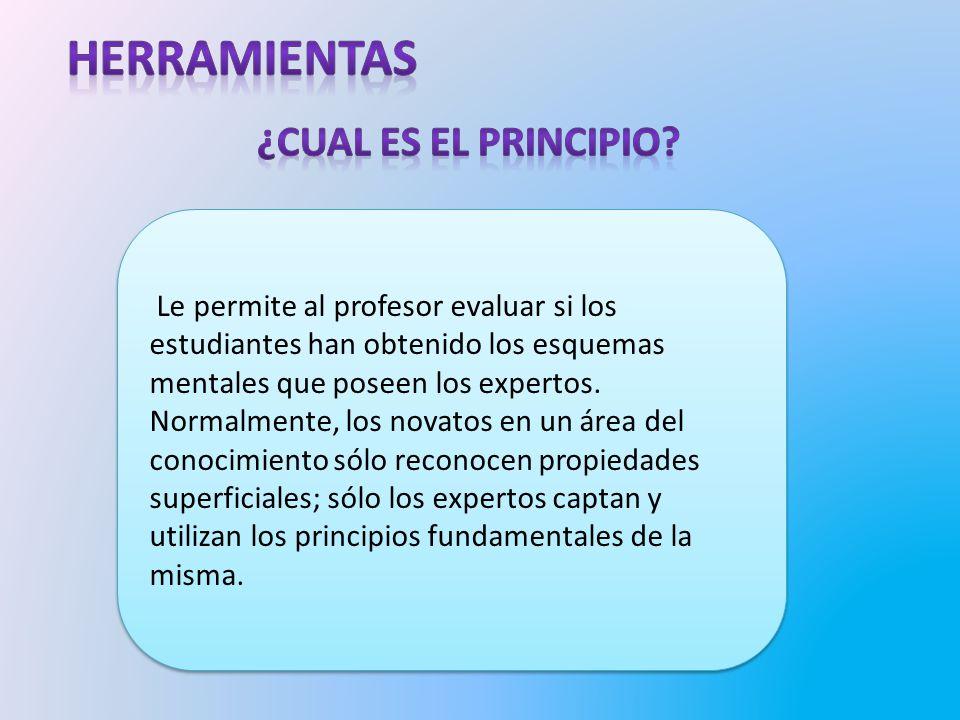 Le permite al profesor evaluar si los estudiantes han obtenido los esquemas mentales que poseen los expertos.