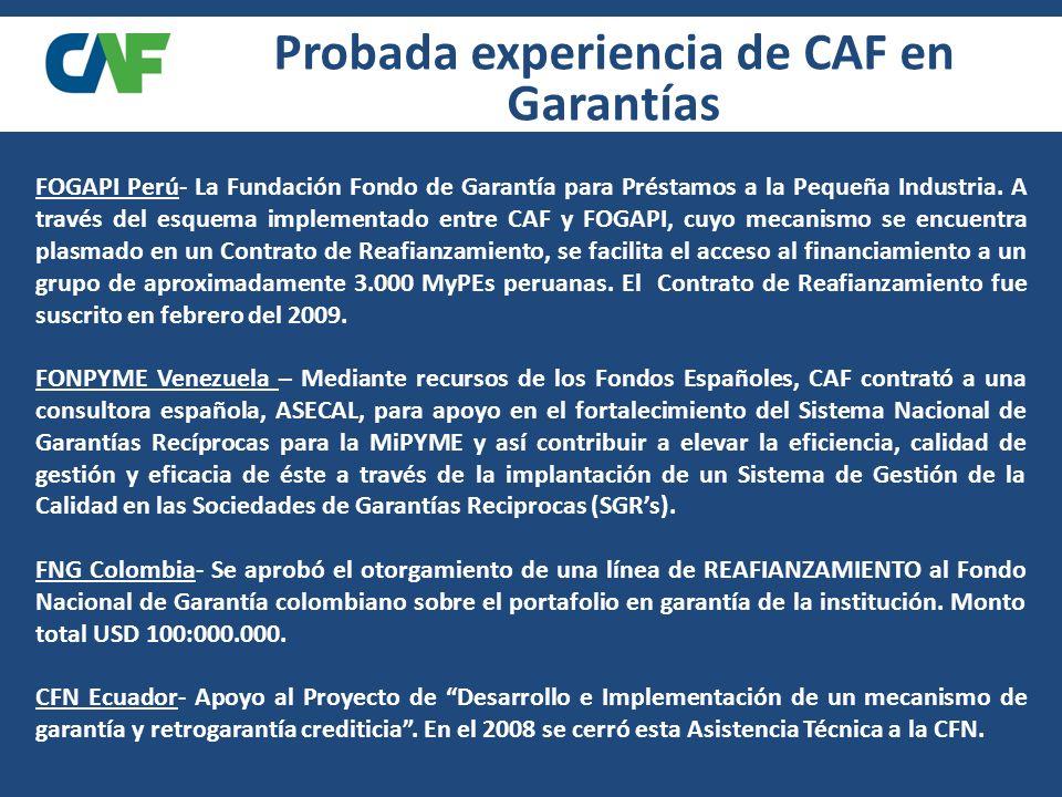 FOGAPI Perú- La Fundación Fondo de Garantía para Préstamos a la Pequeña Industria.