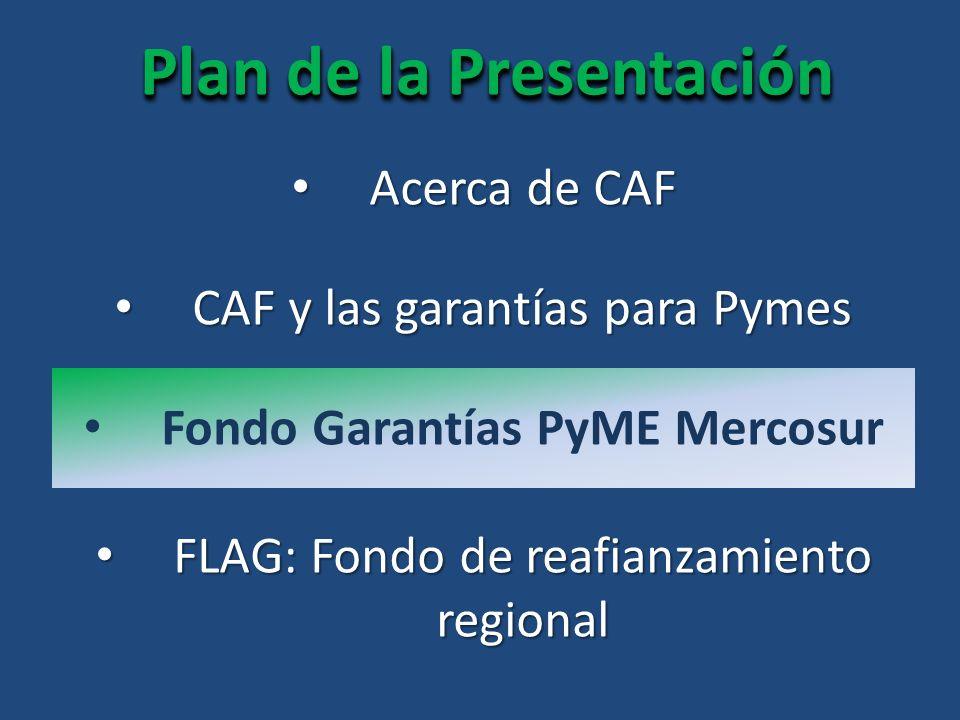 Plan de la Presentación Acerca de CAF Acerca de CAF FLAG: Fondo de reafianzamiento regional FLAG: Fondo de reafianzamiento regional CAF y las garantías para Pymes CAF y las garantías para Pymes Fondo Garantías PyME Mercosur