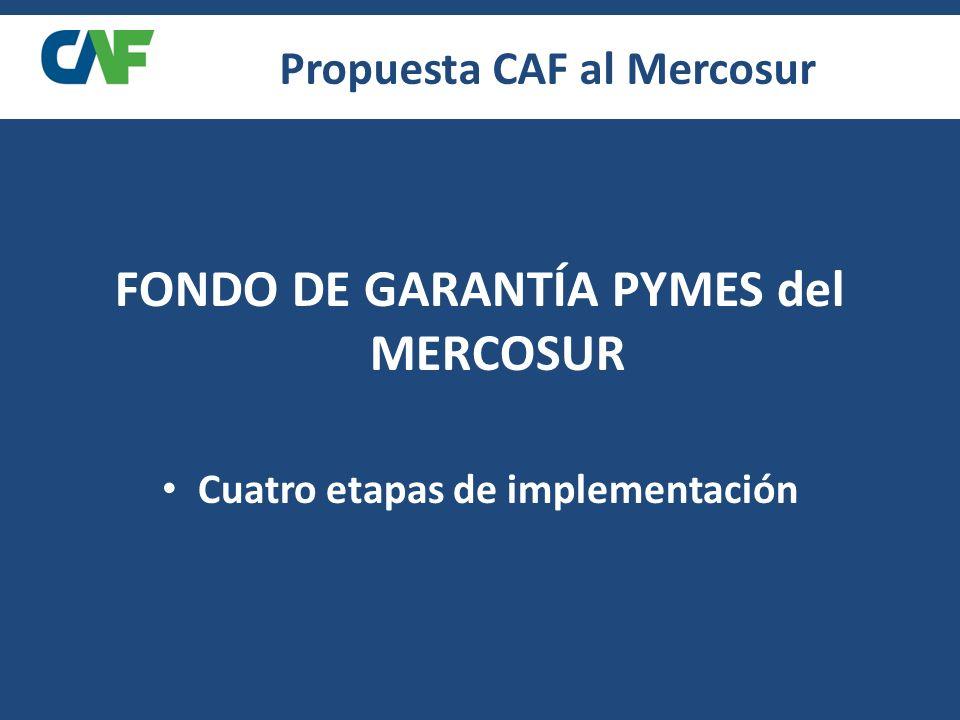 Propuesta CAF al Mercosur FONDO DE GARANTÍA PYMES del MERCOSUR Cuatro etapas de implementación