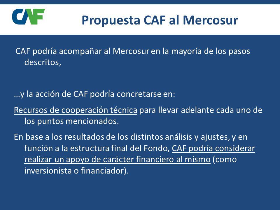 ROL DE CAF CAF podría acompañar al Mercosur en la mayoría de los pasos descritos, …y la acción de CAF podría concretarse en: Recursos de cooperación técnica para llevar adelante cada uno de los puntos mencionados.