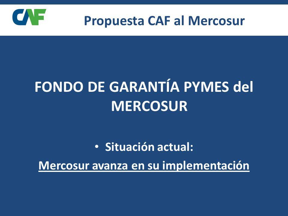 FONDO DE GARANTÍA PYMES del MERCOSUR Situación actual: Mercosur avanza en su implementación