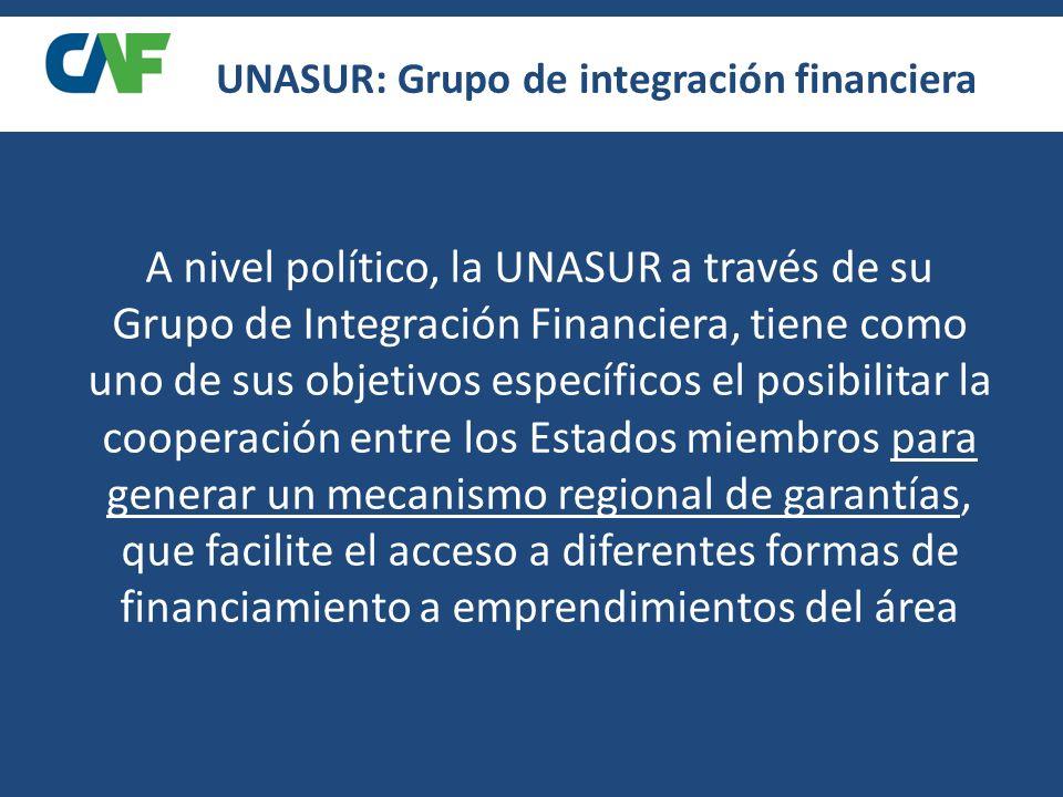 A nivel político, la UNASUR a través de su Grupo de Integración Financiera, tiene como uno de sus objetivos específicos el posibilitar la cooperación entre los Estados miembros para generar un mecanismo regional de garantías, que facilite el acceso a diferentes formas de financiamiento a emprendimientos del área UNASUR: Grupo de integración financiera