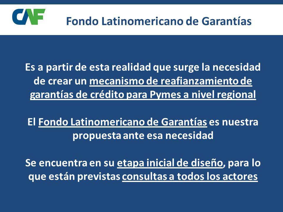 Es a partir de esta realidad que surge la necesidad de crear un mecanismo de reafianzamiento de garantías de crédito para Pymes a nivel regional El Fondo Latinomericano de Garantías es nuestra propuesta ante esa necesidad Se encuentra en su etapa inicial de diseño, para lo que están previstas consultas a todos los actores Fondo Latinomericano de Garantías
