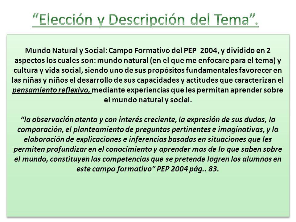 Mundo Natural y Social: Campo Formativo del PEP 2004, y dividido en 2 aspectos los cuales son: mundo natural (en el que me enfocare para el tema) y cu