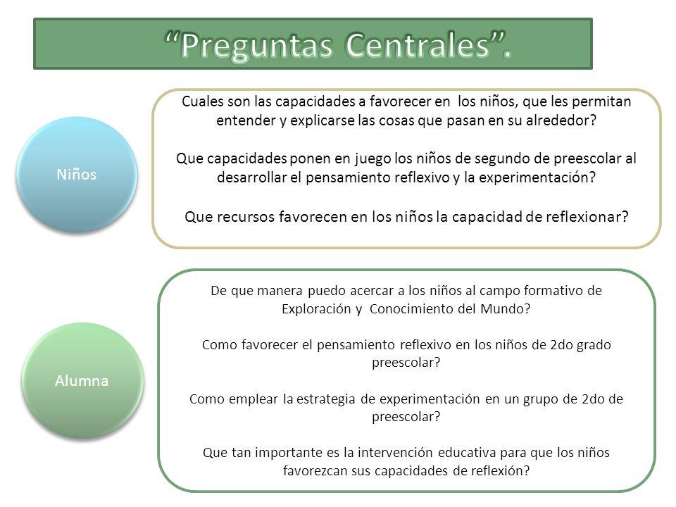 Conocimiento del medio natural y social I y II.