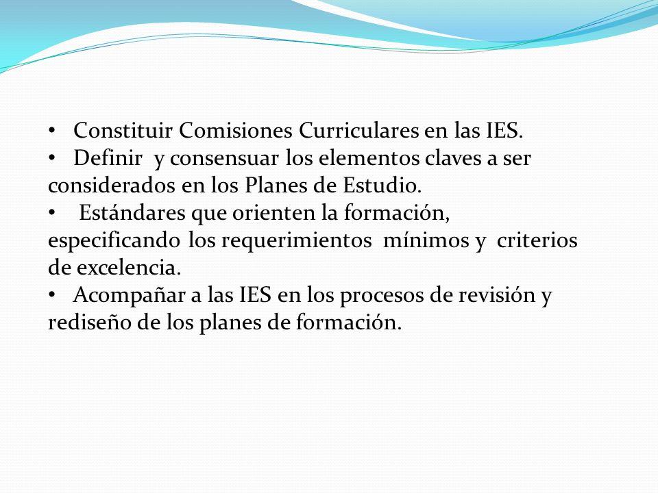 Constituir Comisiones Curriculares en las IES.