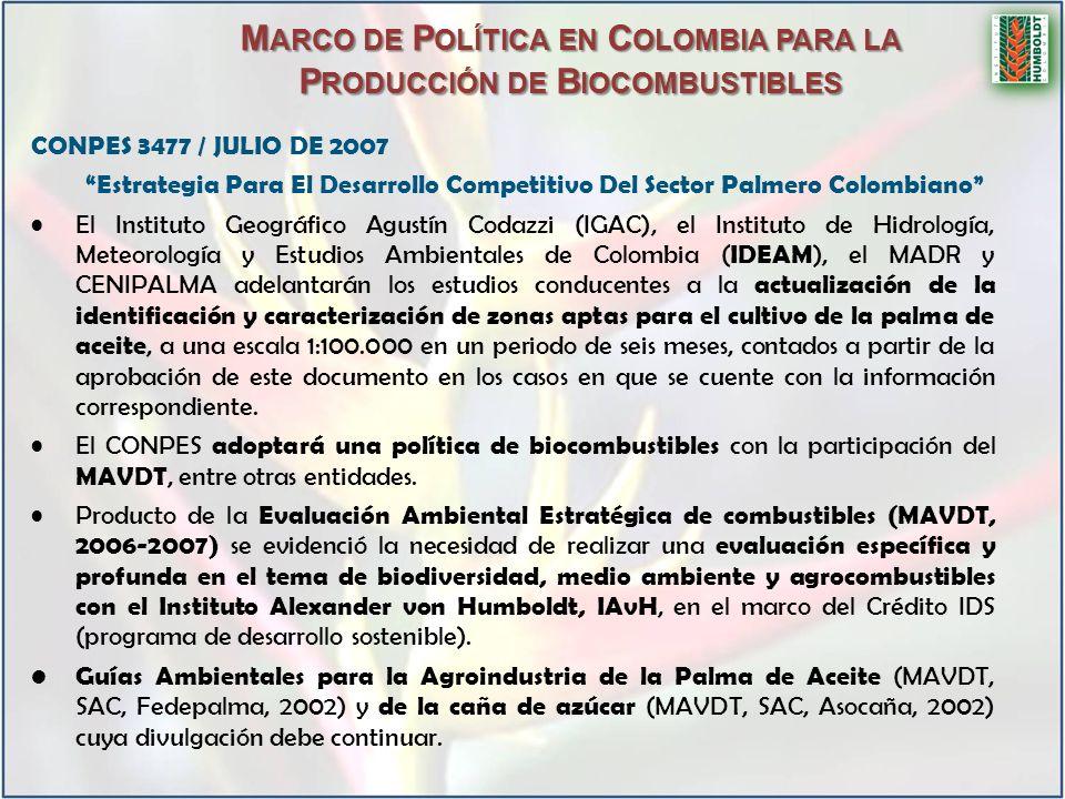 CONPES 3477 / JULIO DE 2007 Estrategia Para El Desarrollo Competitivo Del Sector Palmero Colombiano El Instituto Geográfico Agustín Codazzi (IGAC), el Instituto de Hidrología, Meteorología y Estudios Ambientales de Colombia ( IDEAM ), el MADR y CENIPALMA adelantarán los estudios conducentes a la actualización de la identificación y caracterización de zonas aptas para el cultivo de la palma de aceite, a una escala 1:100.000 en un periodo de seis meses, contados a partir de la aprobación de este documento en los casos en que se cuente con la información correspondiente.