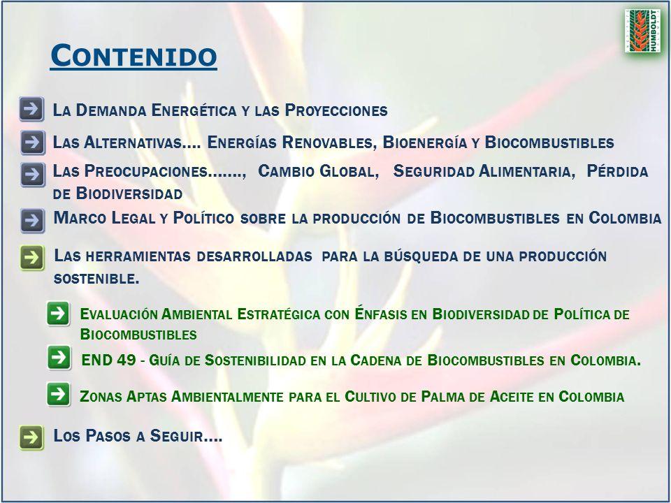 L AS HERRAMIENTAS DESARROLLADAS PARA LA BÚSQUEDA DE UNA PRODUCCIÓN SOSTENIBLE.