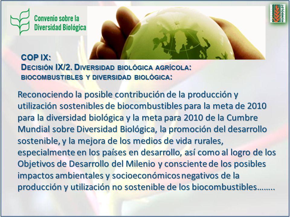 Reconociendo la posible contribución de la producción y utilización sostenibles de biocombustibles para la meta de 2010 para la diversidad biológica y la meta para 2010 de la Cumbre Mundial sobre Diversidad Biológica, la promoción del desarrollo sostenible, y la mejora de los medios de vida rurales, especialmente en los países en desarrollo, así como al logro de los Objetivos de Desarrollo del Milenio y consciente de los posibles impactos ambientales y socioeconómicos negativos de la producción y utilización no sostenible de los biocombustibles……..