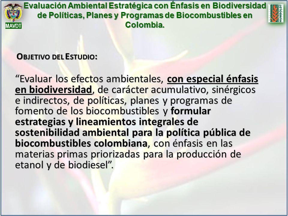 Evaluación Ambiental Estratégica con Énfasis en Biodiversidad de Políticas, Planes y Programas de Biocombustibles en Colombia. Evaluar los efectos amb