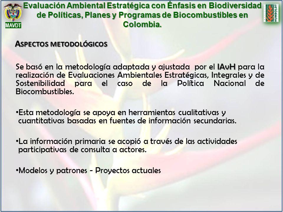 IAvH Se basó en la metodología adaptada y ajustada por el IAvH para la realización de Evaluaciones Ambientales Estratégicas, Integrales y de Sostenibi