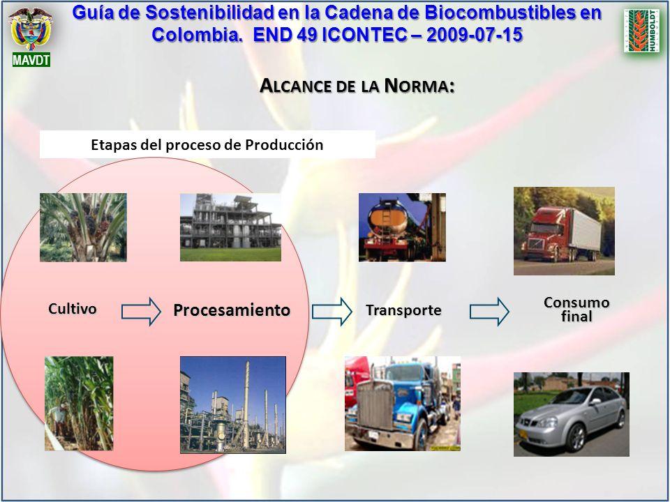 Guía de Sostenibilidad en la Cadena de Biocombustibles en Colombia. END 49 ICONTEC – 2009-07-15 MAVDT A LCANCE DE LA N ORMA : Etapas del proceso de Pr