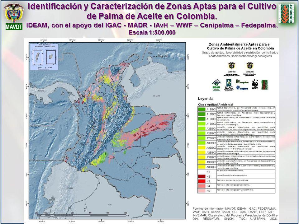 MAVDT Identificación y Caracterización de Zonas Aptas para el Cultivo de Palma de Aceite en Colombia. IDEAM, con el apoyo del IGAC - MADR - IAvH – WWF