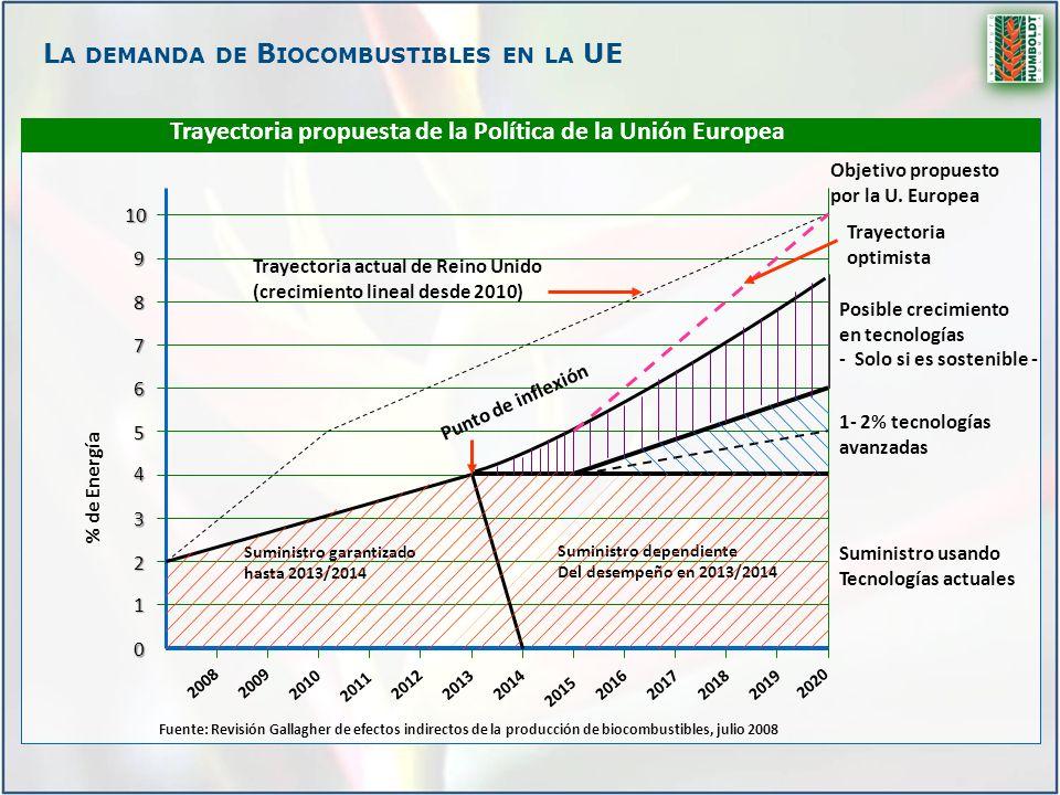 L A DEMANDA DE B IOCOMBUSTIBLES EN LA UE