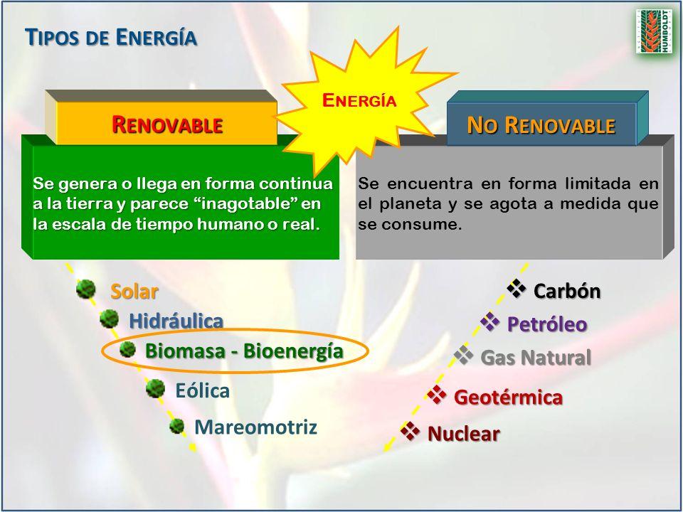Bioenergía Biolíquidos Biocarburantes Transporte BiogasBiomasa Sólida Generación de Calor /Frío Eléctricidad Industria Química Biodiesel Bioetanol Biometanol Biohidrógeno Biometano Biohidrógeno Biometano Biocombustibles P RODUCTOS Y U SOS ….
