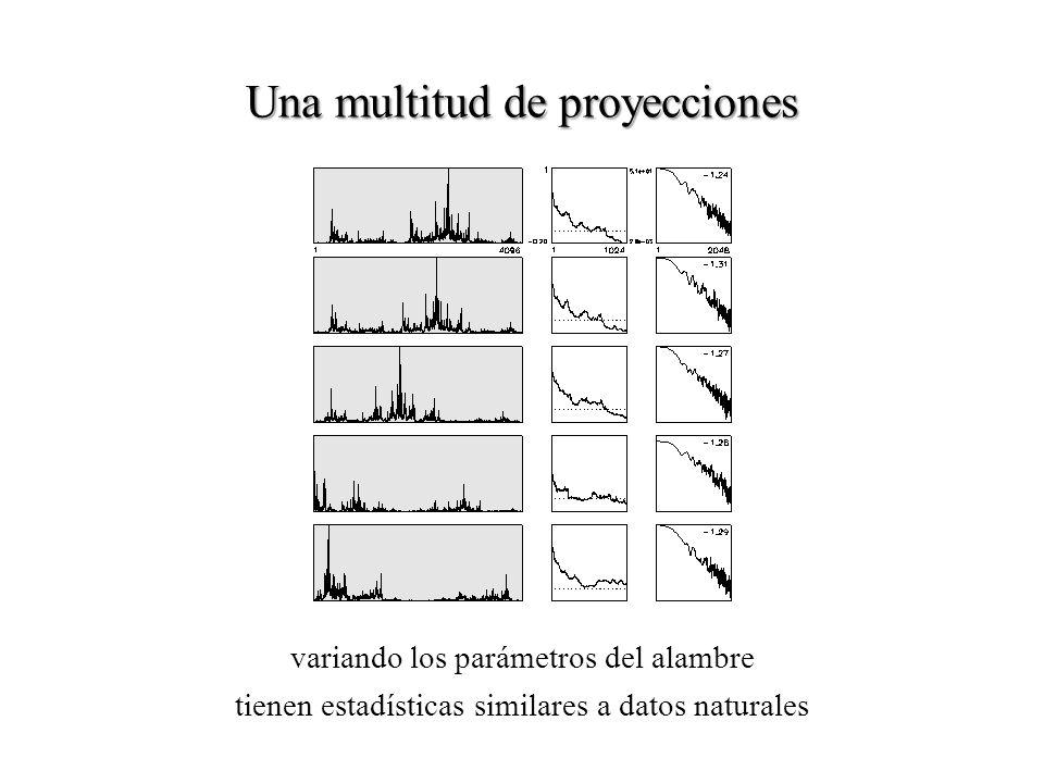 Una multitud de proyecciones variando los parámetros del alambre tienen estadísticas similares a datos naturales
