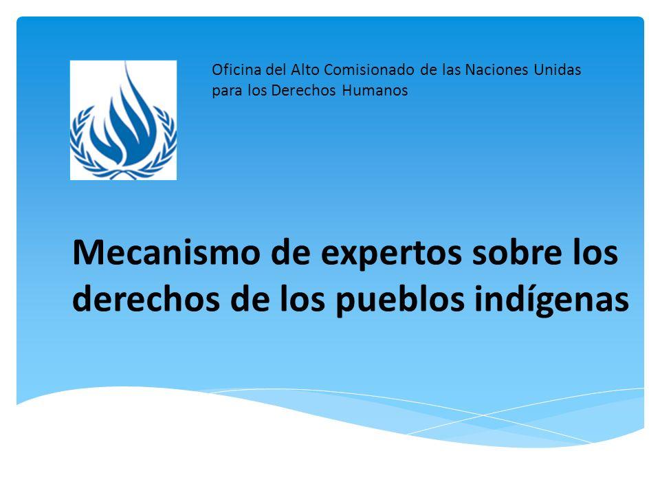 Antecedentes del Mecanismo de Expertos Ubicación del Mecanismo de Expertos dentro del sistema de derechos humanos de las Naciones Unidas Establecimiento del Mecanismo de Expertos, 2007 Mandato del Mecanismo de Expertos: Resolución 6/36 (2007) del Consejo de Derechos Humanos Composición del Mecanismo de Expertos Sesiones del Mecanismo de Expertos Participación en el Mecanismo de Expertos, incluyendo sus sesiones anuales Preparación de un enunciado para presentar en la sesión anual Esquema