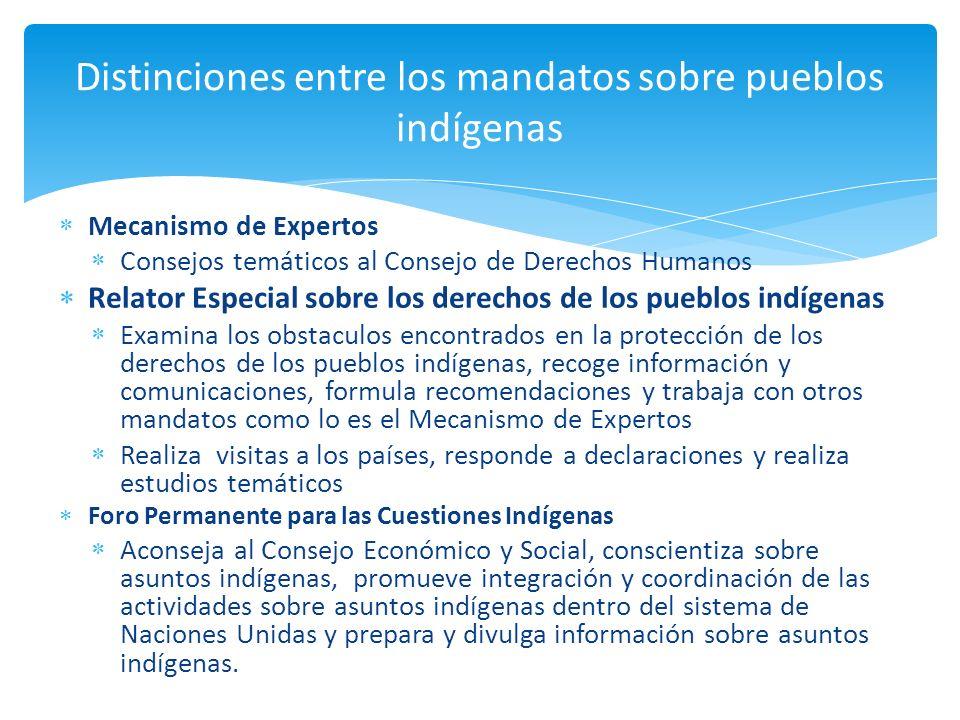 Mecanismo de Expertos Consejos temáticos al Consejo de Derechos Humanos Relator Especial sobre los derechos de los pueblos indígenas Examina los obsta