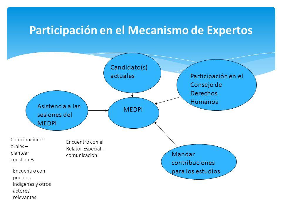 Participación en el Mecanismo de Expertos MEDPI Candidato(s) actuales Asistencia a las sesiones del MEDPI Mandar contribuciones para los estudios Part