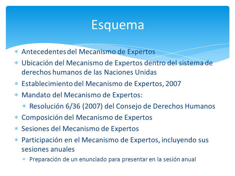 Antecedentes del Mecanismo de Expertos Ubicación del Mecanismo de Expertos dentro del sistema de derechos humanos de las Naciones Unidas Establecimien