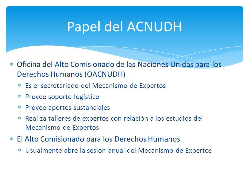 Oficina del Alto Comisionado de las Naciones Unidas para los Derechos Humanos (OACNUDH) Es el secretariado del Mecanismo de Expertos Provee soporte lo
