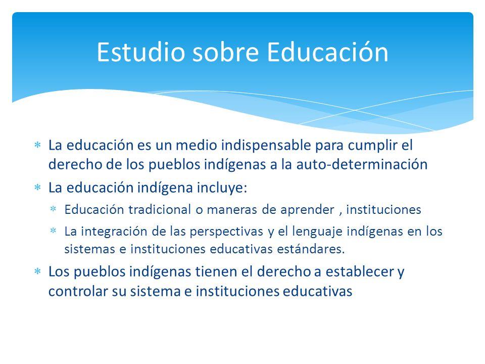 La educación es un medio indispensable para cumplir el derecho de los pueblos indígenas a la auto-determinación La educación indígena incluye: Educaci
