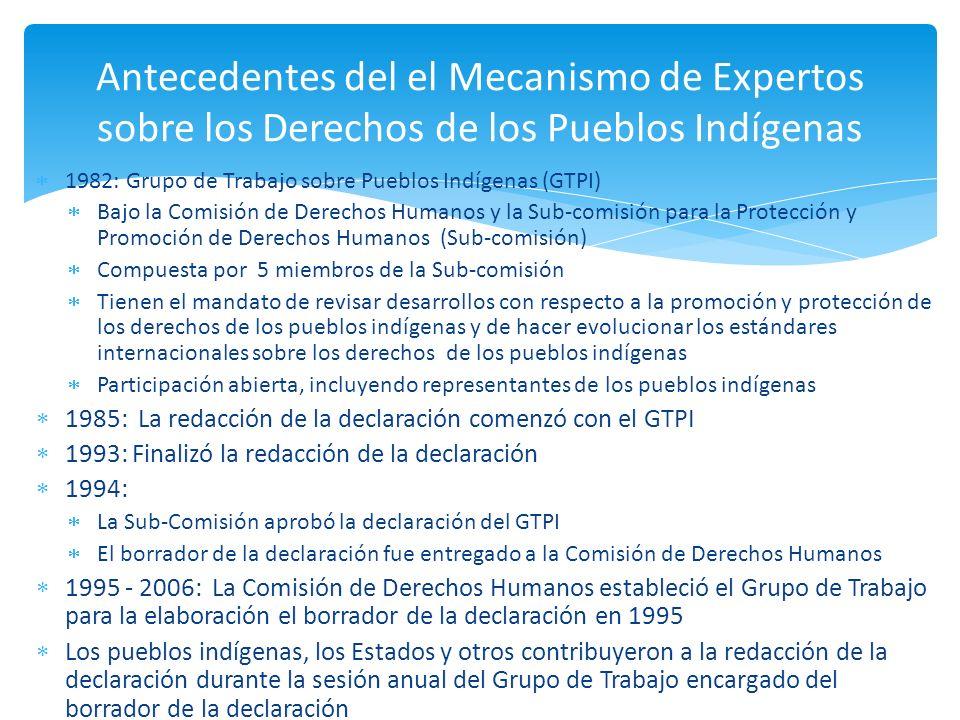 2006: Disolución de la Comisión de Derechos Humanos (incluyendo los ´órganos subsidiarios como el GTPI) y su reemplazo por parte del Consejo de Derechos Humanos Comenzó la construcción de la institución del Consejo de Derechos Humanos Aprobación de la Declaración en el Consejo de Derechos Humanos (Junio de 2006) 2007: Acuerdo sobre la estructura del Consejo de Derechos Humanos y sus órganos subsidiarios Fue establecido el Mecanismo de Expertos sobre los Derechos de los Pueblos Indigenas por el Consejo de Derechos Humanos Adopción de la Declaración sobre los derechos de los Pueblos Indigenas en la Asamblea General (sept 2007) Antecedentes