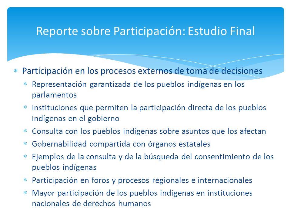 Participación en los procesos externos de toma de decisiones Representación garantizada de los pueblos indígenas en los parlamentos Instituciones que