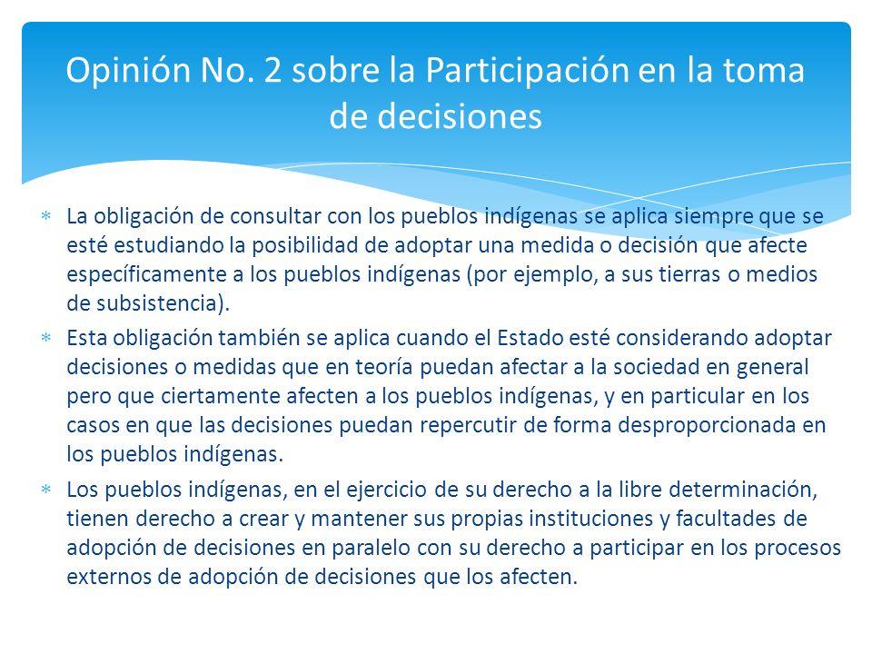 La obligación de consultar con los pueblos indígenas se aplica siempre que se esté estudiando la posibilidad de adoptar una medida o decisión que afec