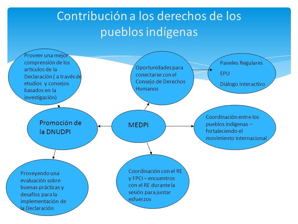 Contribución a los derechos de los pueblos indígenas MEDPI Proveer una mejor comprensión de los artículos de la Declaración ( a través de etudios y co