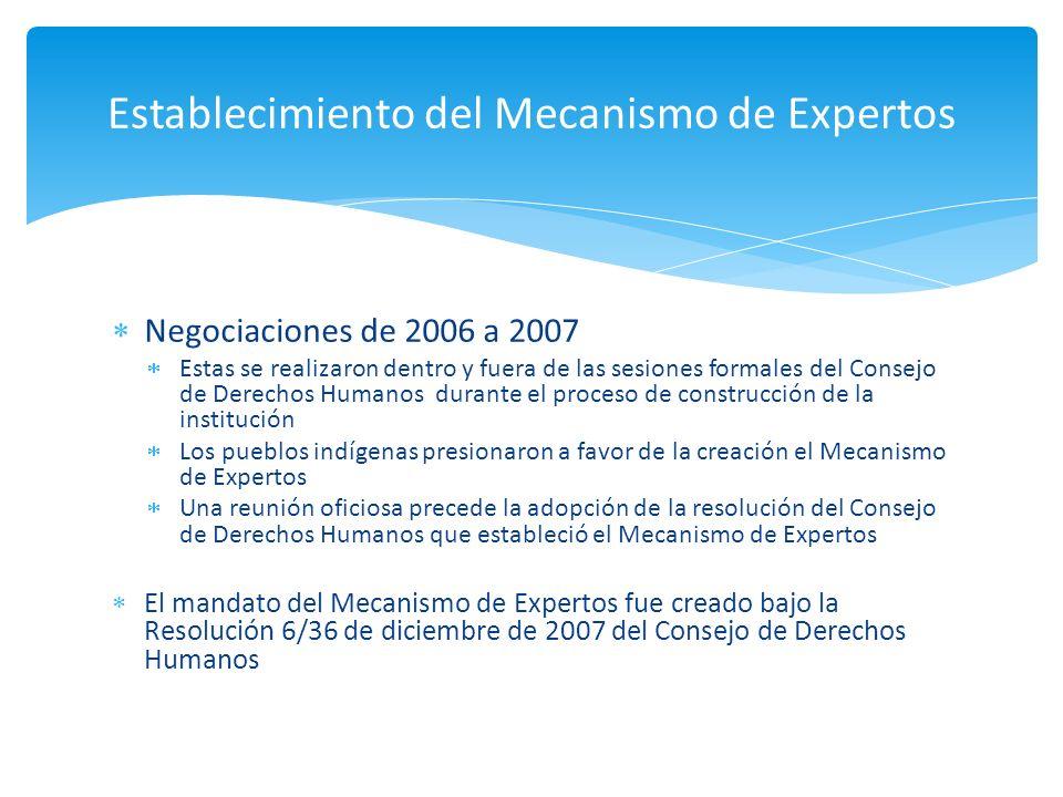 Negociaciones de 2006 a 2007 Estas se realizaron dentro y fuera de las sesiones formales del Consejo de Derechos Humanos durante el proceso de constru