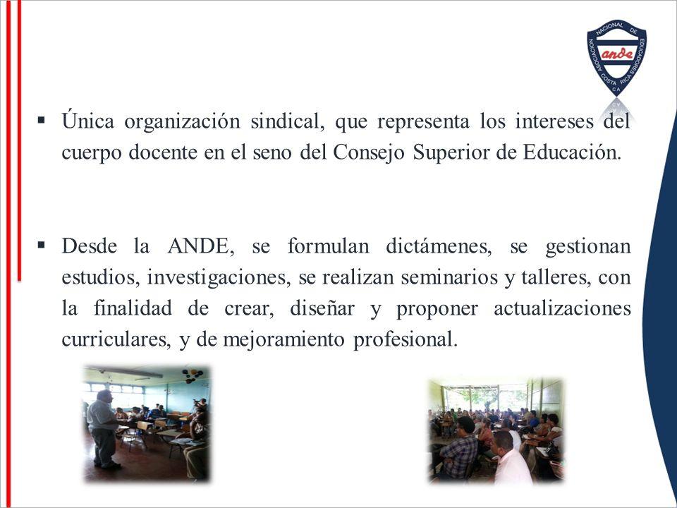 Única organización sindical, que representa los intereses del cuerpo docente en el seno del Consejo Superior de Educación. Desde la ANDE, se formulan