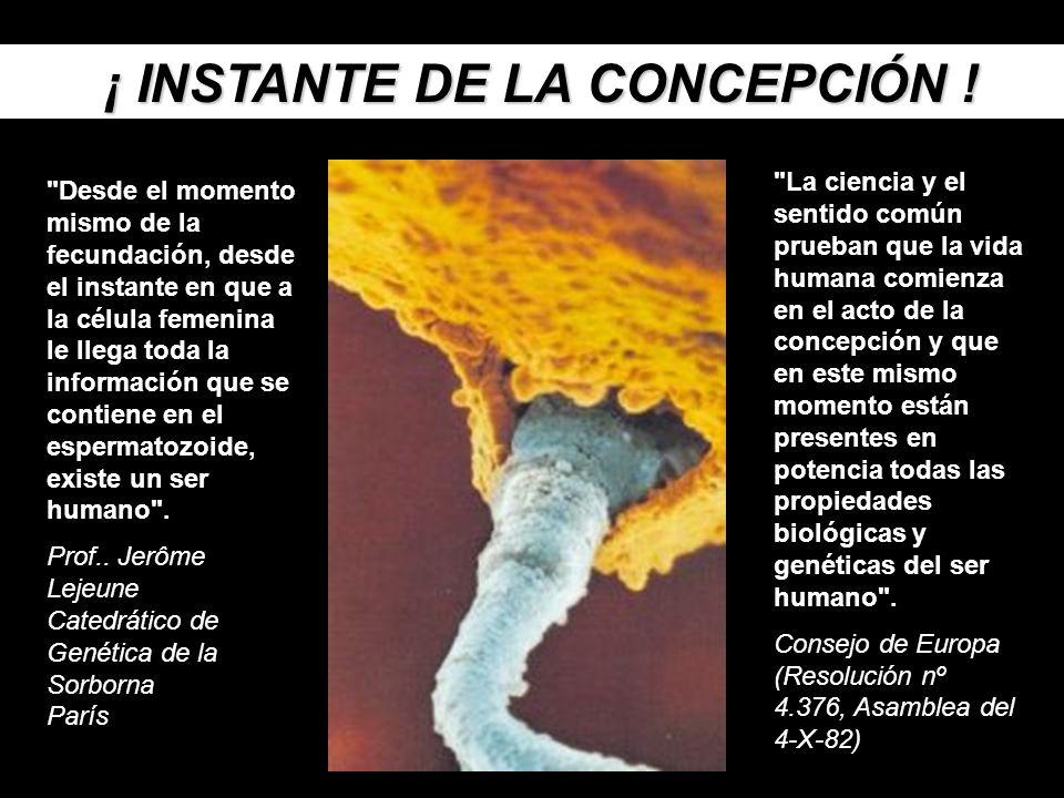 ¡ INSTANTE DE LA CONCEPCIÓN .