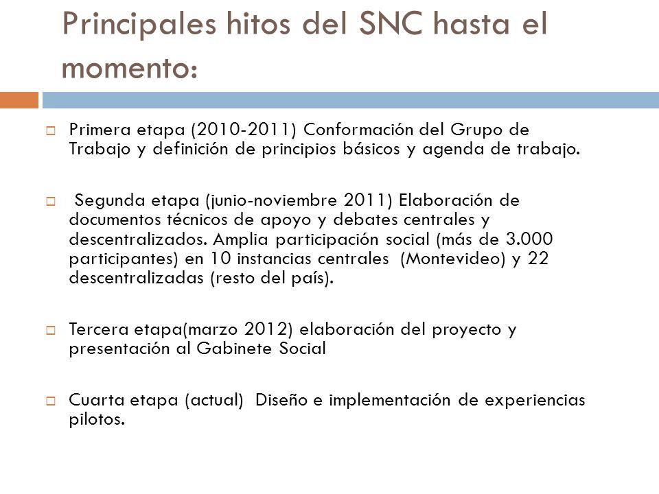 Principales hitos del SNC hasta el momento: Primera etapa (2010-2011) Conformación del Grupo de Trabajo y definición de principios básicos y agenda de trabajo.