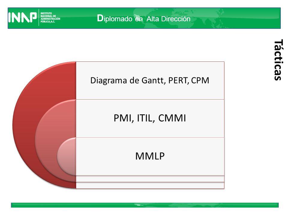 D iplomado en Alta Dirección Estructura MMLP El marco lógico de los proyectos, MLP, se desarrolla mediante siete grandes procedimientos – técnicas que se reúnen en la Matriz del MLP.