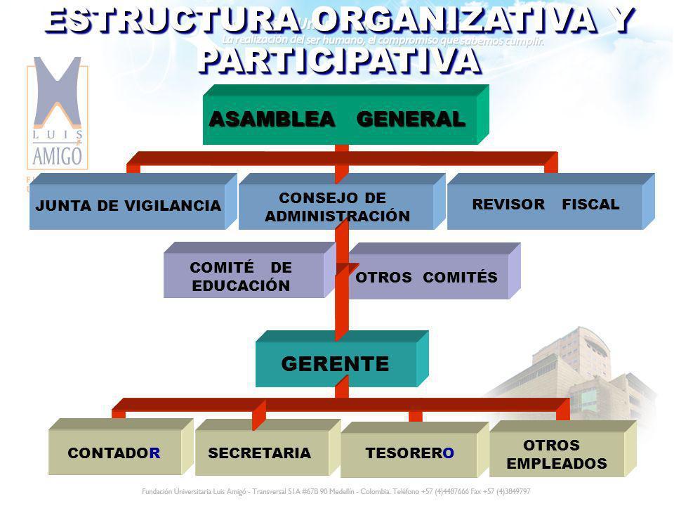 ESTRUCTURA ORGANIZATIVA Y PARTICIPATIVA JUNTA DE VIGILANCIA OTROS COMITÉS SECRETARIATESORERO OTROS EMPLEADOS GERENTE CONSEJO DE ADMINISTRACIÓN REVISOR