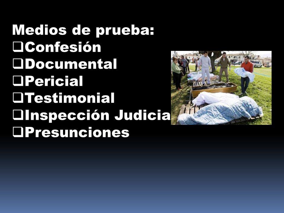 Medios de prueba: Confesión Documental Pericial Testimonial Inspección Judicial Presunciones