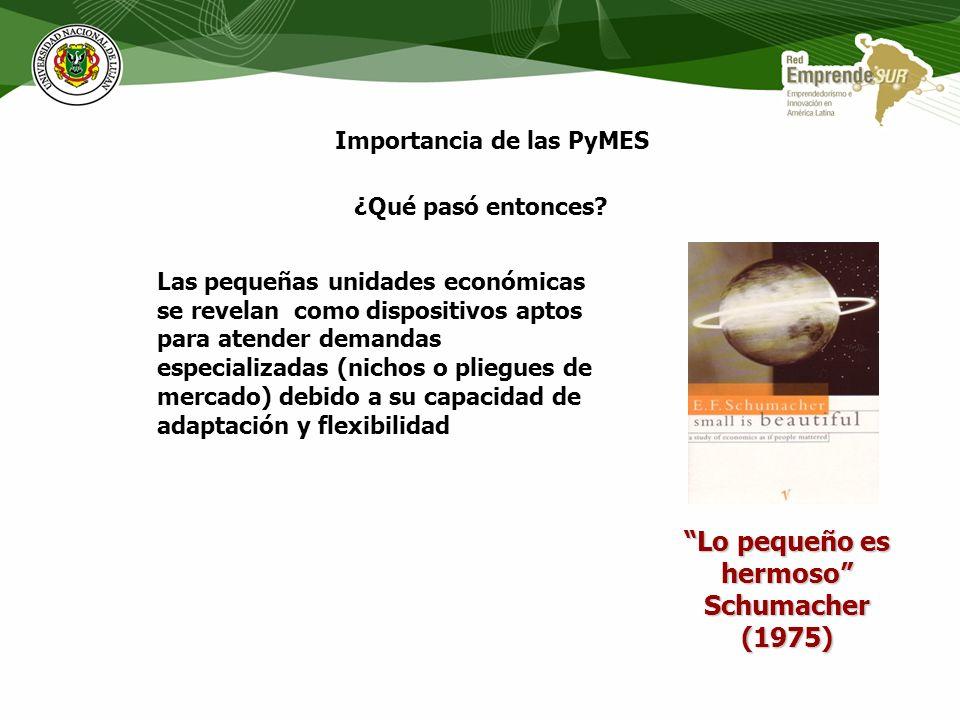 Importancia de las PyMES ¿Qué pasó entonces? Incremento de la velocidad del cambio tecnológico Mercados mas complejos Consumidores mas exigentes Cambi