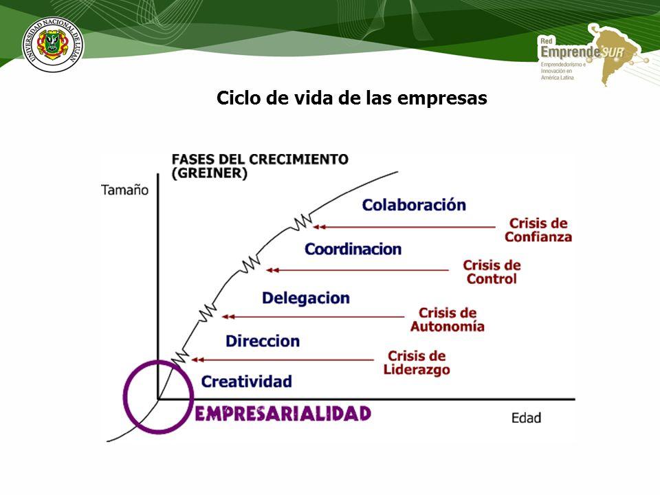 La interdependencia entre las familias de elementos (el emprendedor y su equipo, el proyecto, el ambiente y los recursos) deben necesariamente conside