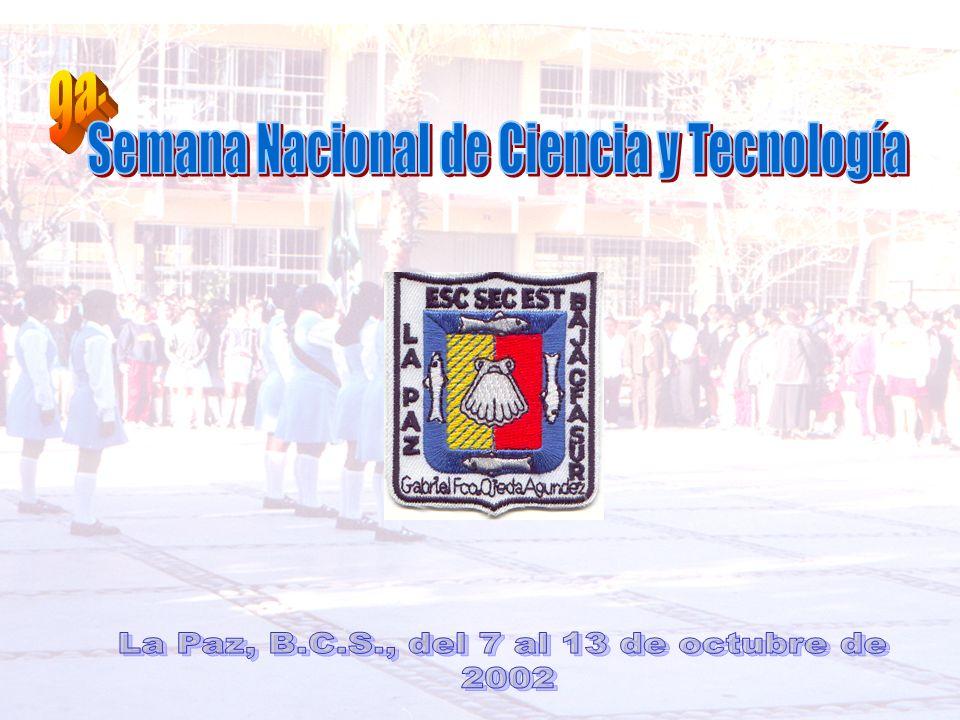 http://www.semarnat.gob.mx http:// www.fcapital.com.ar http:// www.aguamarket.com http:// www.ecoportal.com http:// www.tragua.com http:// www.ire.ubc.ca http:// www.imta.mx http:// www.cna.gob.mx http:// www.cienciayagua.org Enciclopedia Microsoft® Encarta® 2002.