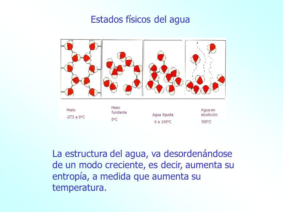 SÓLIDO LÍQUIDO GAS Glaciares Hielo en las superficies de agua en invierno Nieve Granizo Escarcha Lluvia Rocío Lagos Ríos Mares Océanos Niebla Nubes El