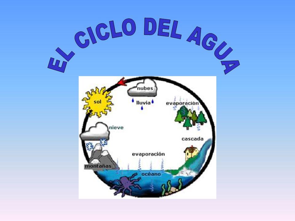 - La contaminación es la introducción de agentes biológicos, químicos o físicos a un medio al que no pertenecen.