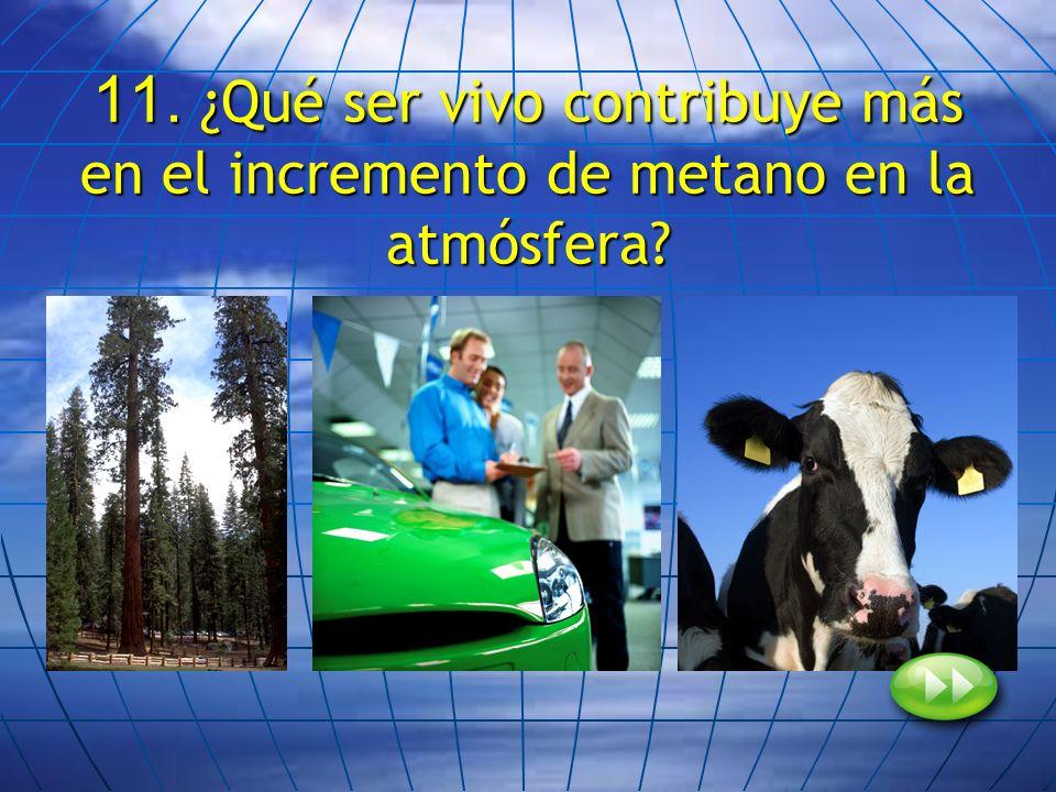 11. ¿Qué ser vivo contribuye más en el incremento de metano en la atmósfera?